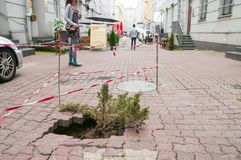 lodz-poland-july-hole-sidewalk-growing-b