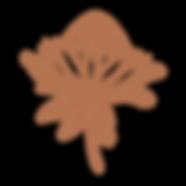 Protea 1.png