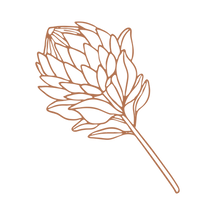 Protea 2.png