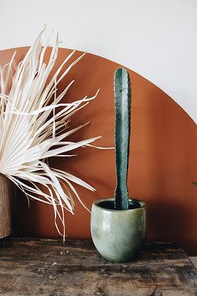 Cactus & son cache-pot