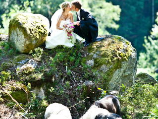 Chic Elopements by LCO