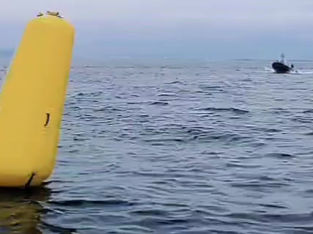The 5th Fleet Race 中止決定
