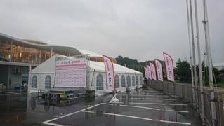 470 class Junior World Championships series 参加支援結果発表!