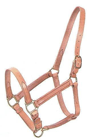 B#651 Sewn Turnout Halters