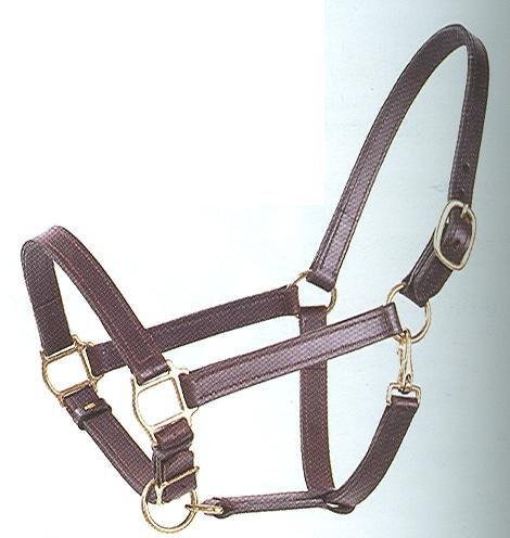 B#850 Economy Sewn Leather Halter