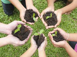 Meio Ambiente: um assunto necessário