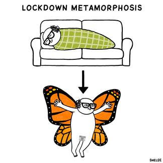 LOCKDOWN METAMORPHOSIS