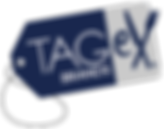 TAGeX Logo.png
