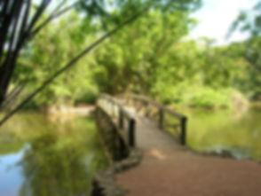 Ponte_lago.JPG
