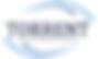 Torrent Capital Limited's Company logo