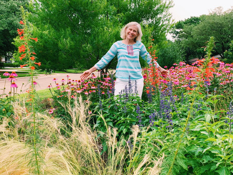 Turn your grass monoculture into a native oasis