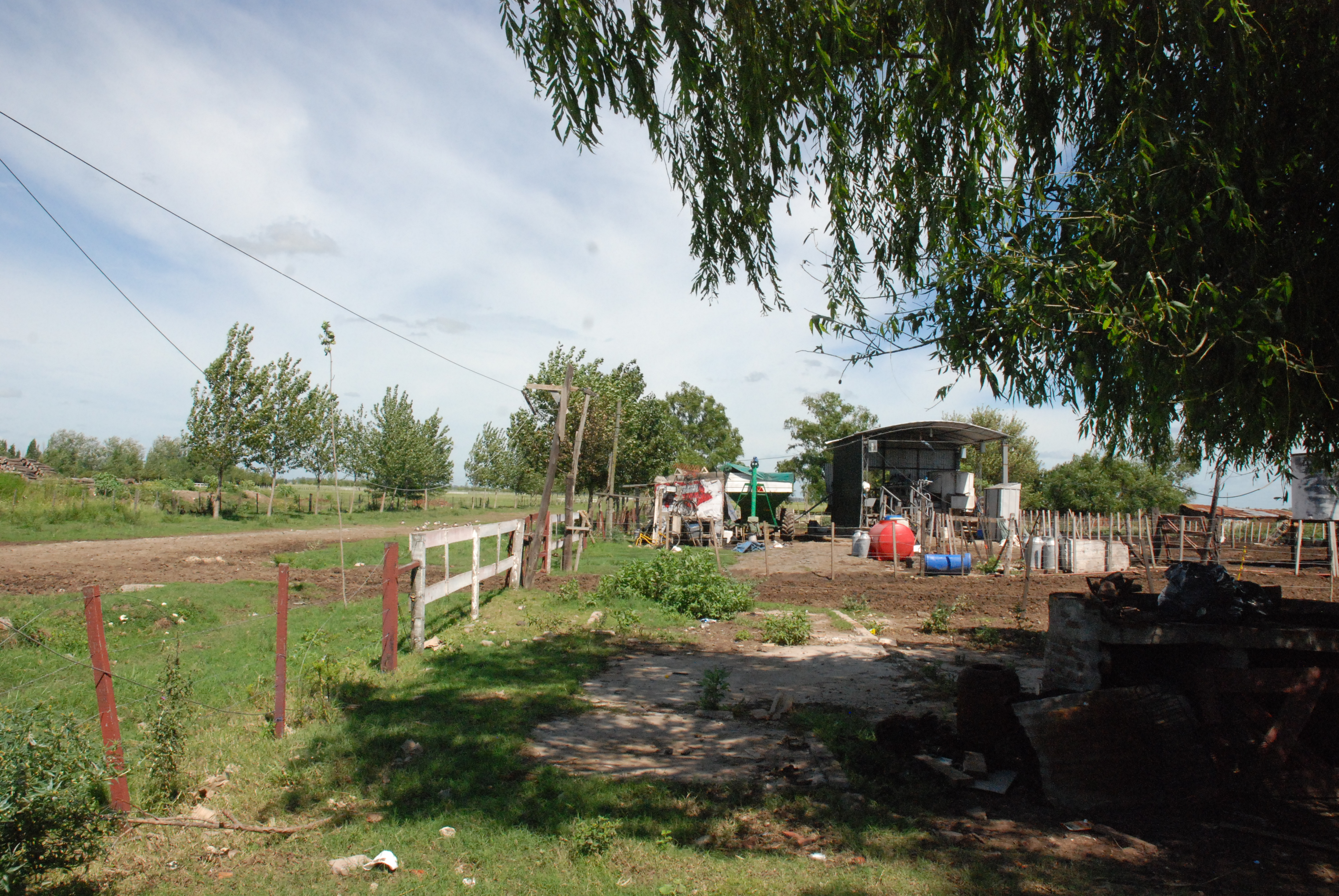 La Resistencia Dairy Farm