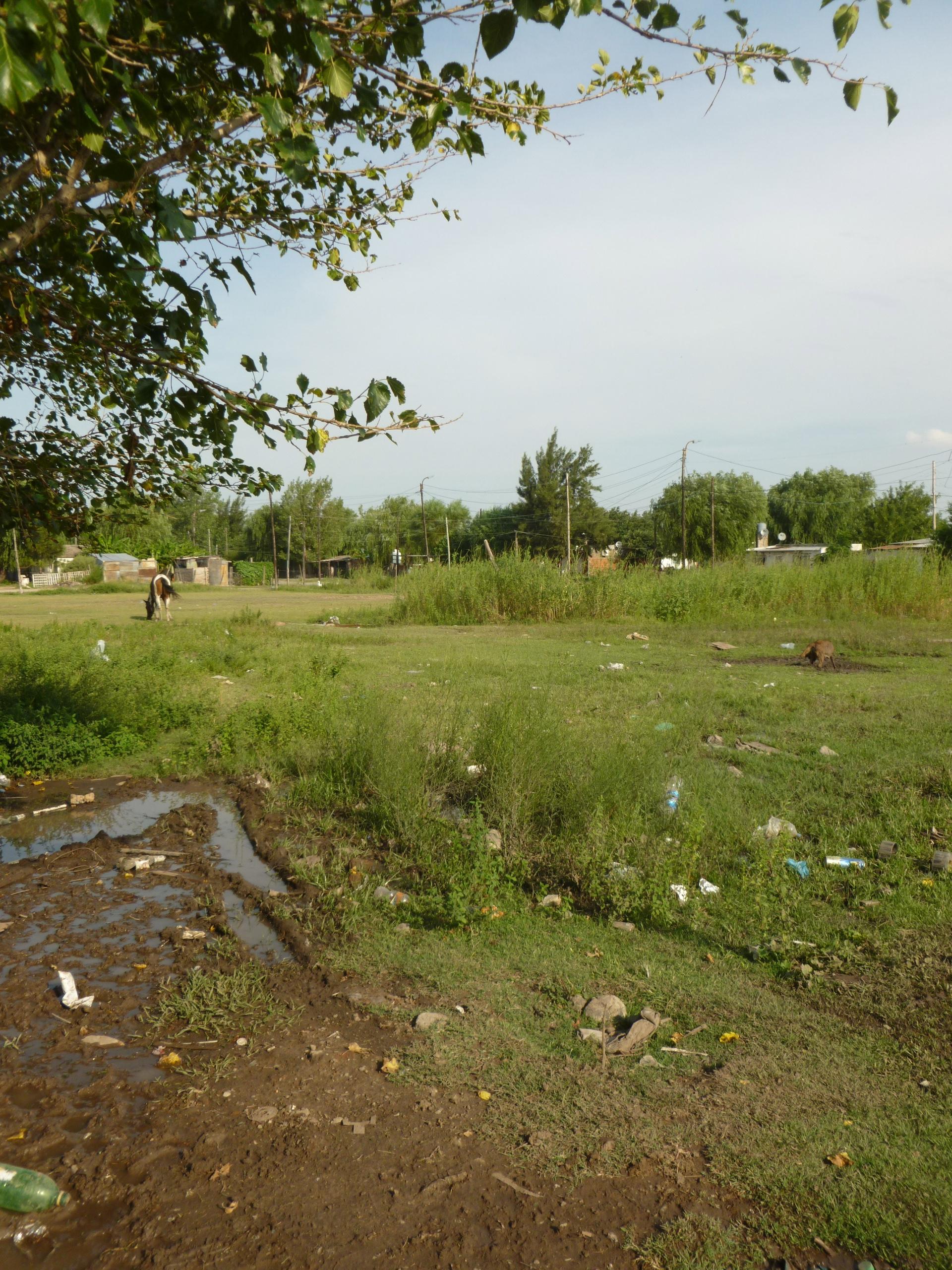 Nuevo Alberdi Rural Area