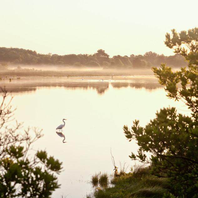 Cape May New Jersey at Dawn