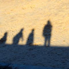 Seawall shadows
