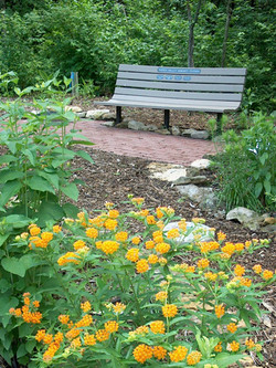 A photo of the Honor Bench in the Butterfly Garden.