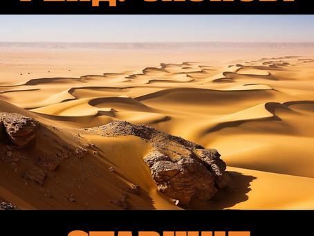 """Новая книга """"Рейд. Оазисы. Старшие сыновья"""""""