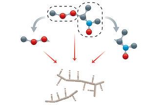 Cooperative effects in transient structu
