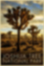 LR Preview Poster Joshua Tree 2.jpg