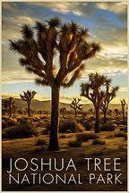 LR Preview Poster Joshua Tree 2.jpg
