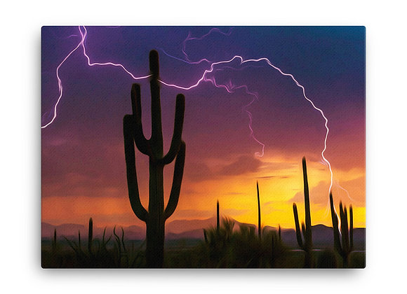 18x24 Saguaro National Park Canvas 2