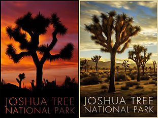 Double Preview Poster - Joshua Tree.jpg