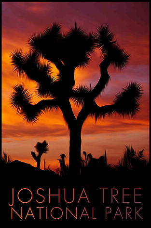 LR Preview Poster - Joshua Tree 1.jpg