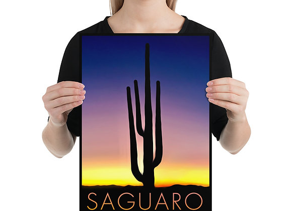 12x18 Saguaro National Park Poster 1