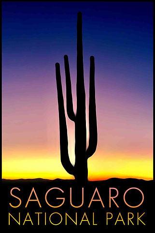 LR Preview Saguaro Poster 1.jpg