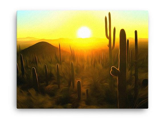 18x24 Saguaro National Park Canvas 1