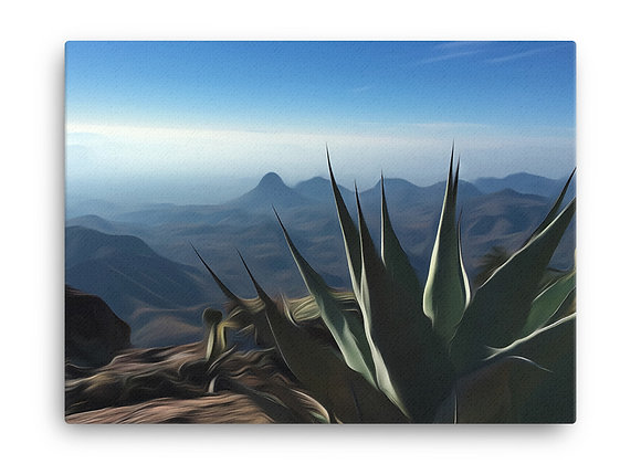 18x24 Big Bend National Park Canvas