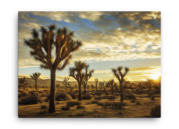 18x24 Joshua Tree Canvas 2