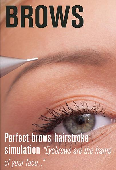 Semi Permanent Makeup Perfect Brows Hairstroke Simulation