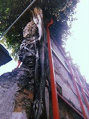 38_PercursoSandra_250419_LuisaC.jpg