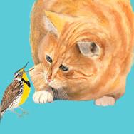 Birdtalk].jpg