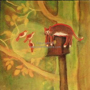 Cat & the Birdhouse