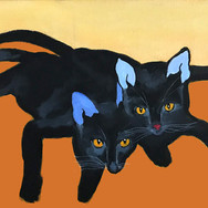 Two Young Cats.jpg