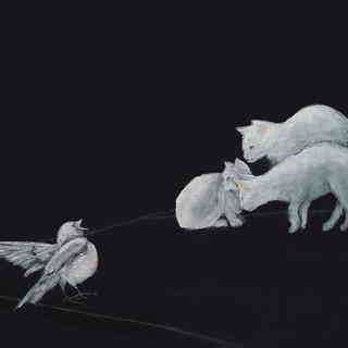 Three White Cats