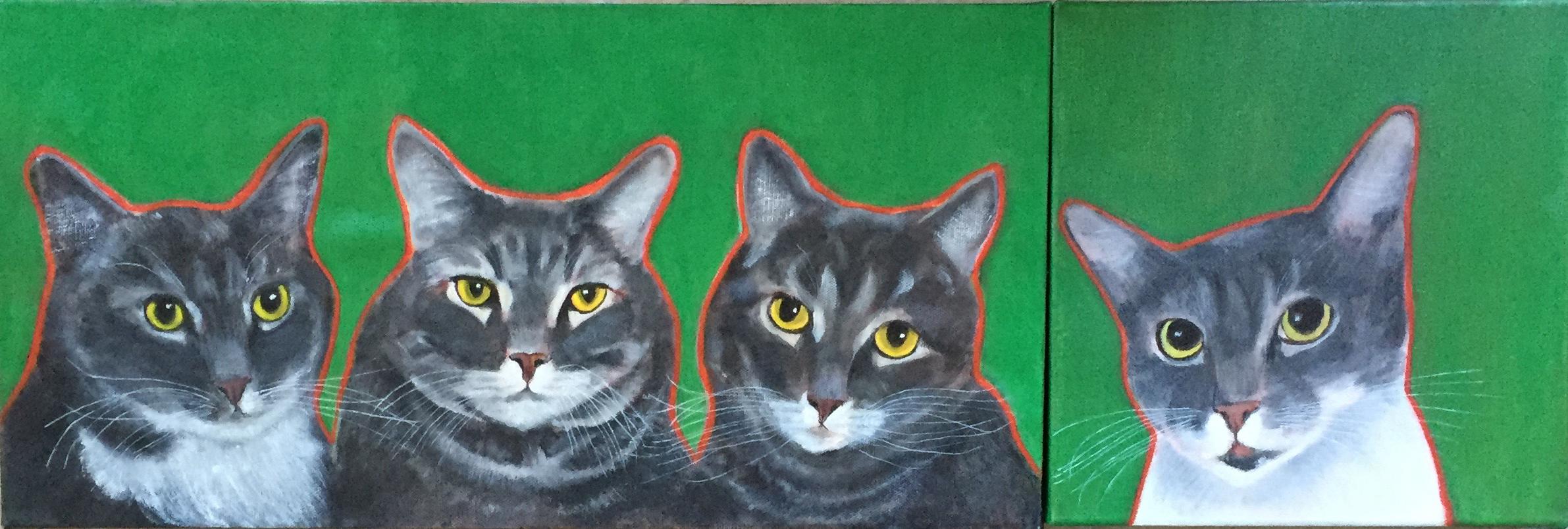 Molly's cats