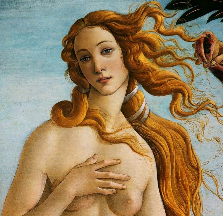 Detail of Venus