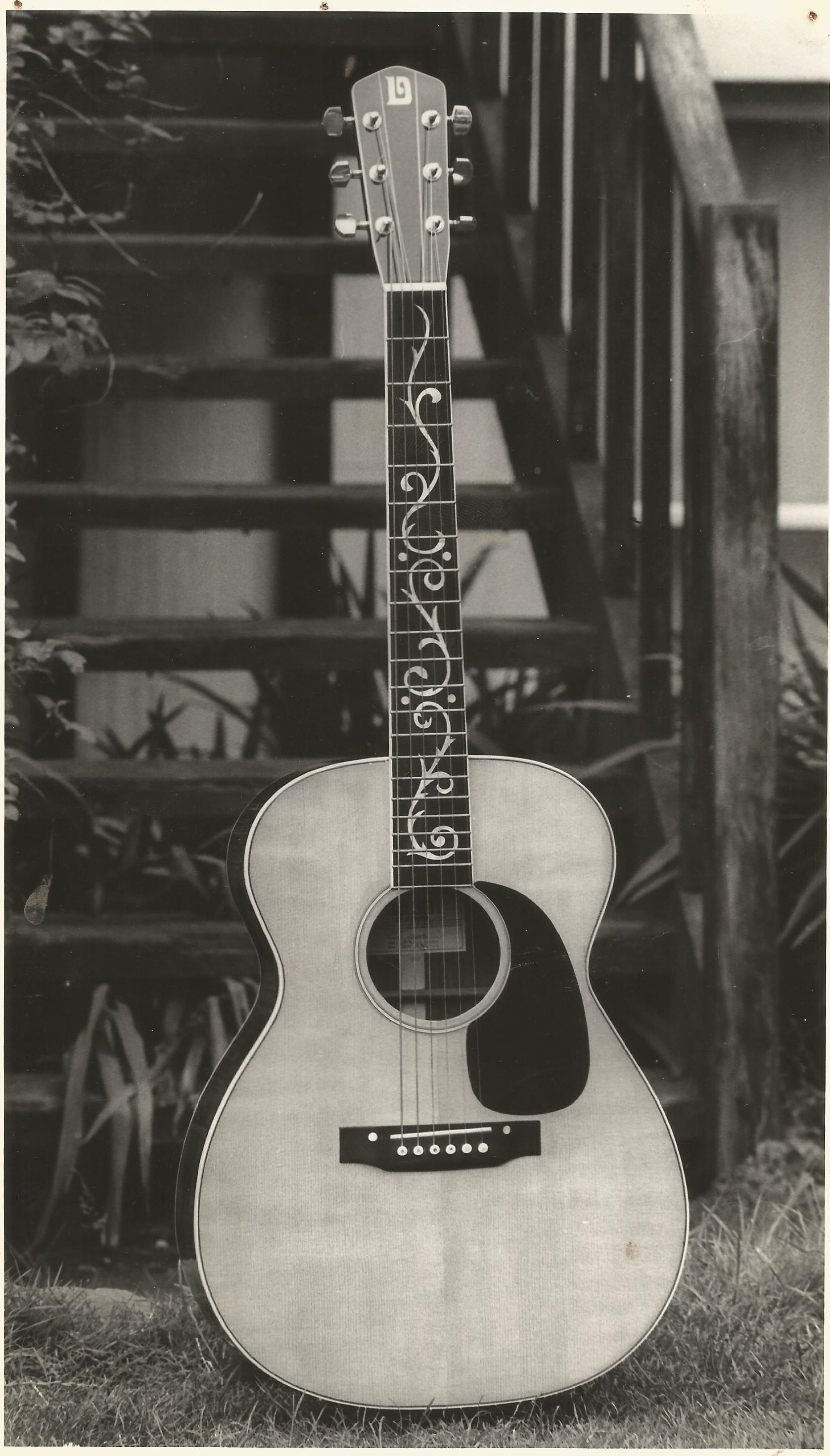 Danvel steel string acoustic