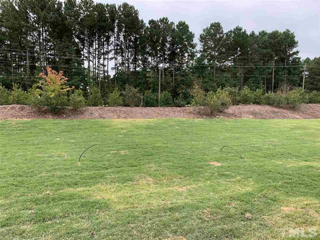 The Parkview - Flat Backyard