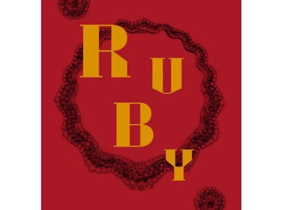 Ruby: The King of Gems