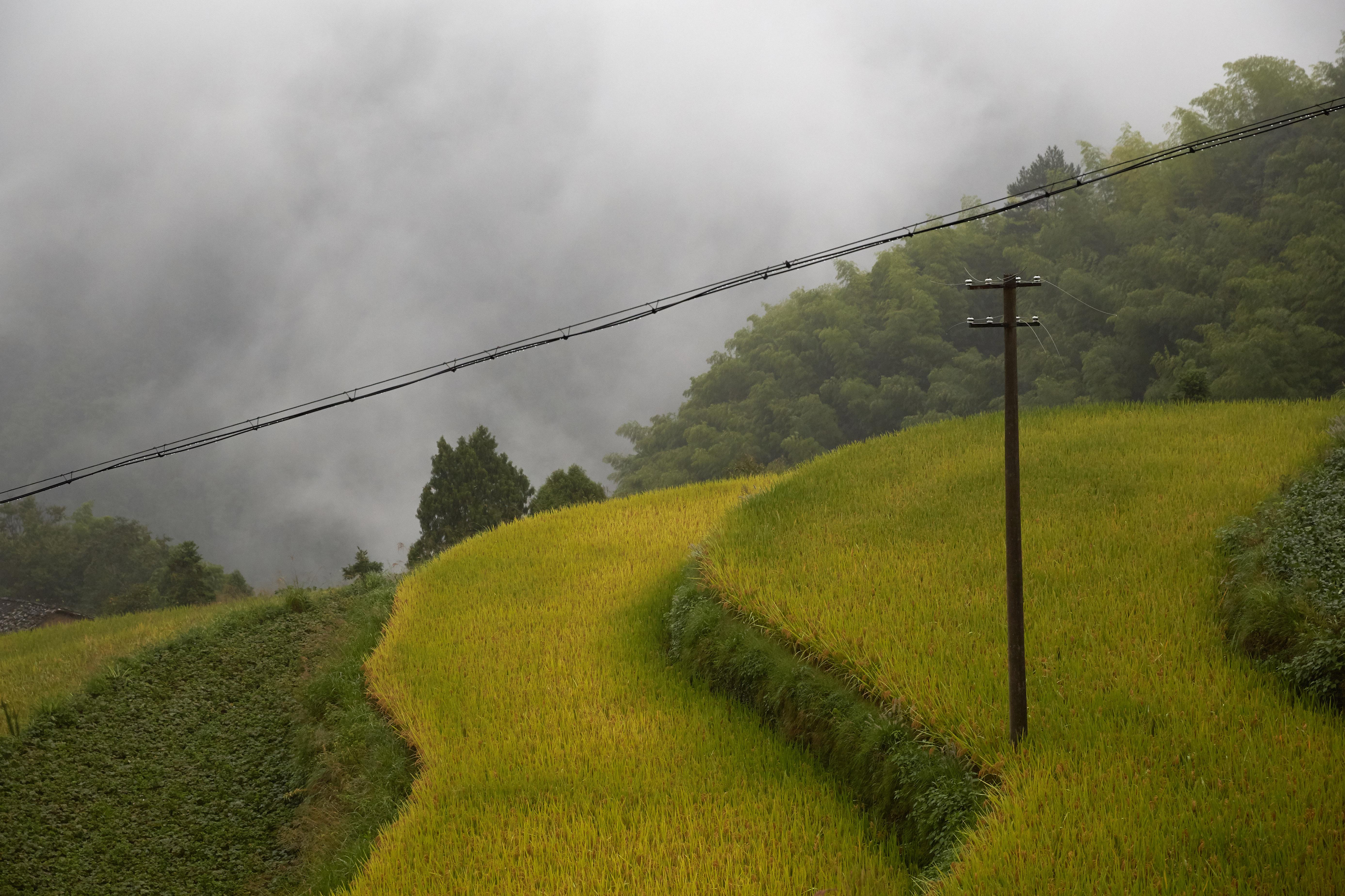 Gongyu, Zhejiang Province, China