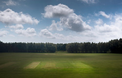 Lewes Fields 2014 by Ramses Radi