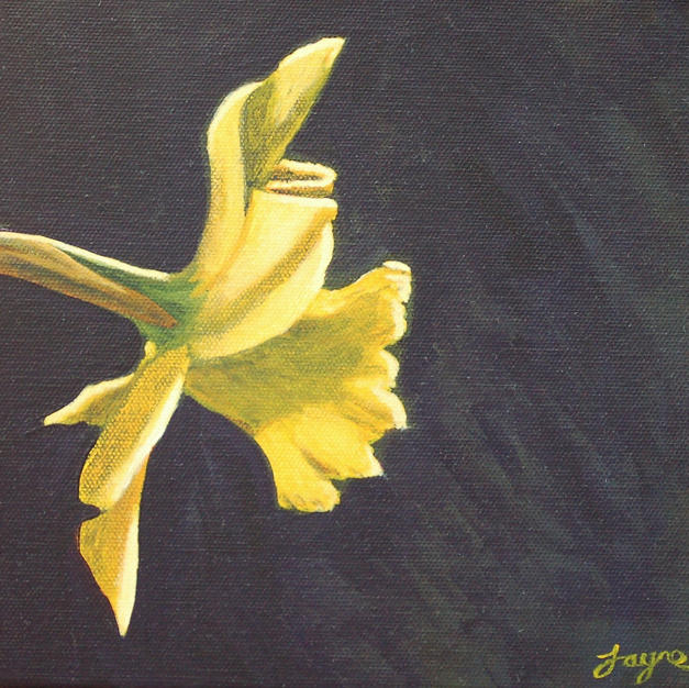 "GREETINGS CARD ""Daffodil"""