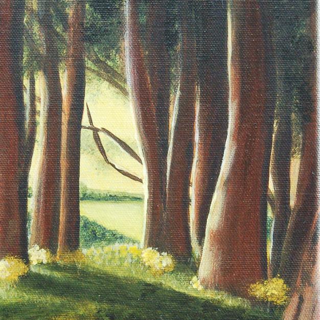 """Woodland View"""