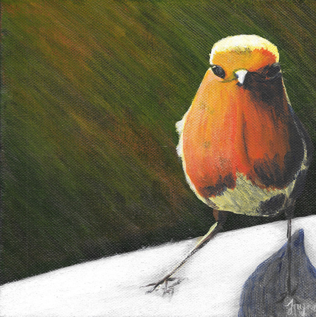 """NOW £25  """"Robin"""""""