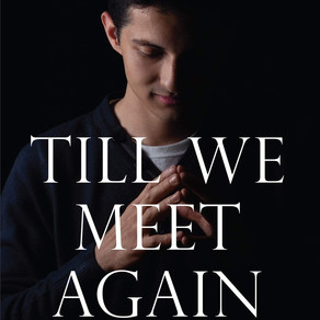 TILL WE MEET AGAIN BOOK REVIEW