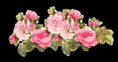vintage-flower-clipart-vintage-rose-20.p